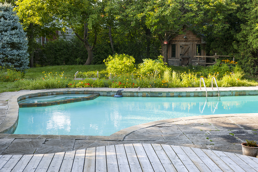 Phoenix Pool Company That Knows Landscaping