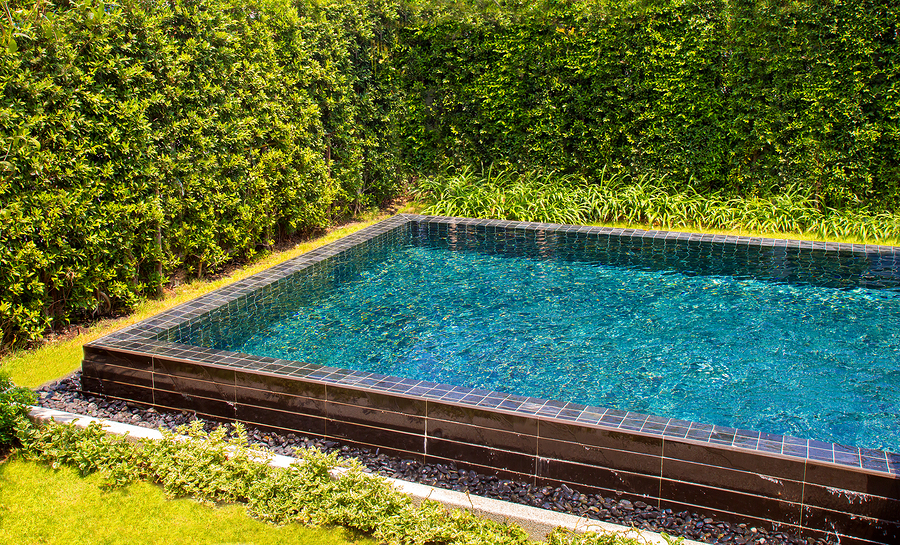 Az pool builders can renovate that neglected pool no for Pool builders in az